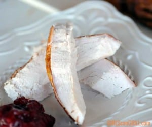 white plate with three strips of sliced turkey breast and cranberry sauce