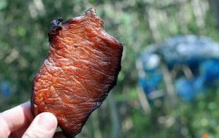 hand holding piece of jerky with trees in background