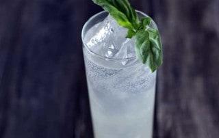 tall narrow glass of smoked tom collins with basil sprig