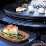 plate of seared sea bass next to Cuisinart 360 XL Griddle