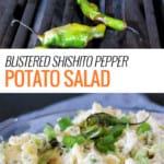 Blistered Shishito Pepper Potato Salad